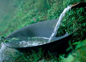 Vietnam-water-bowl-rfw-1