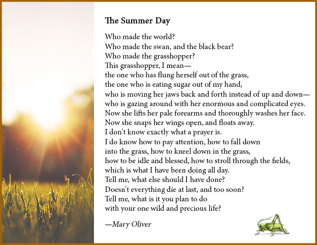 maryoliver-summerday